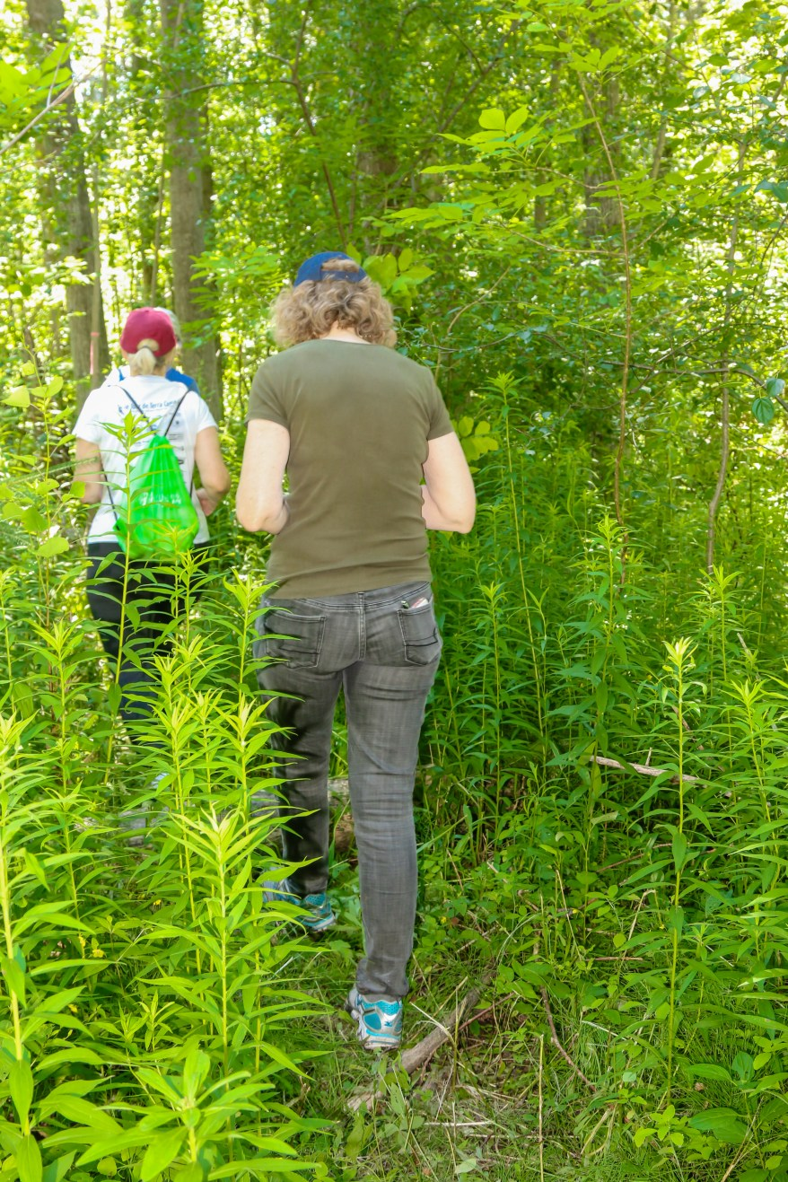 Caledon Hiking Trails, Things to do in Ontario, Hiking Trails Ontario, Places to Visit in Caledon, Caledon Ontario, Things to do in Caledon,
