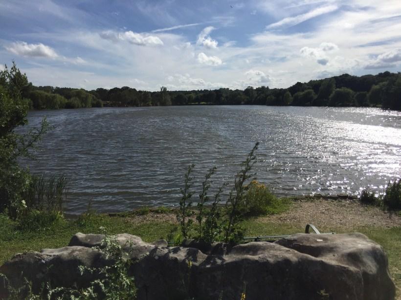 Fryerning carp lake