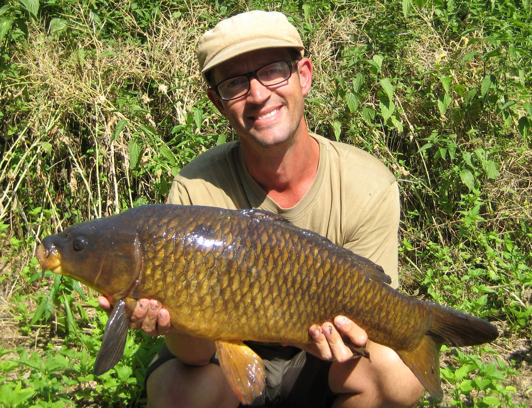 Carp Fishing River Lea Lee throughout the spring and summer