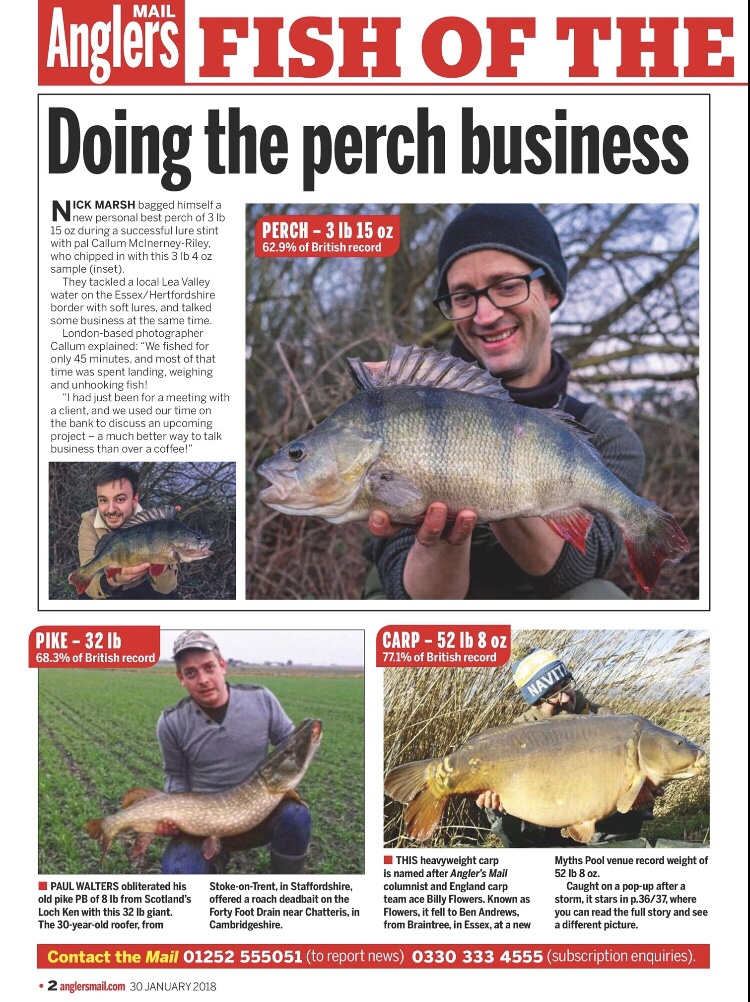 perch anglers mail lea valley