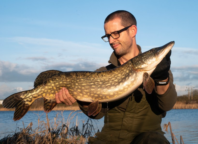 Big Pike on Lures