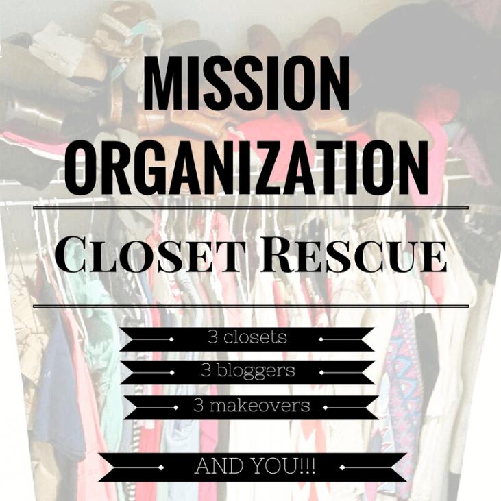 Mission Organization: Closet Rescue – Phase 2 – The DIYs