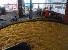 Fermenting agave