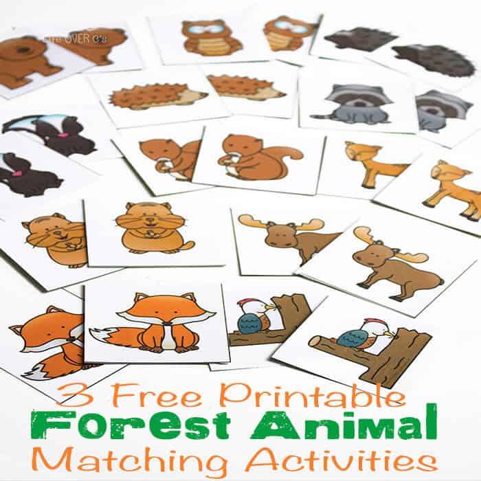 Rainforest Puzzles Printable