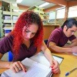 士業が扱う分野と資格試験