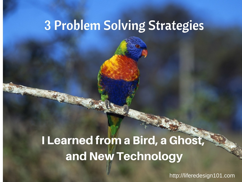 A Bird, A Ghost and New Technology