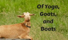 Of Yoga, Goats, and Boats