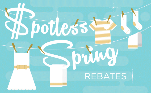 blog_spotless_spring_rebates