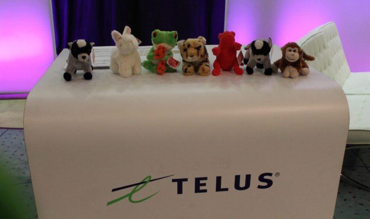 Telus-ShesConnected-2012