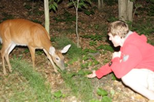 Me getting up close and personal with a White Tail Deer camping at Killbear Park
