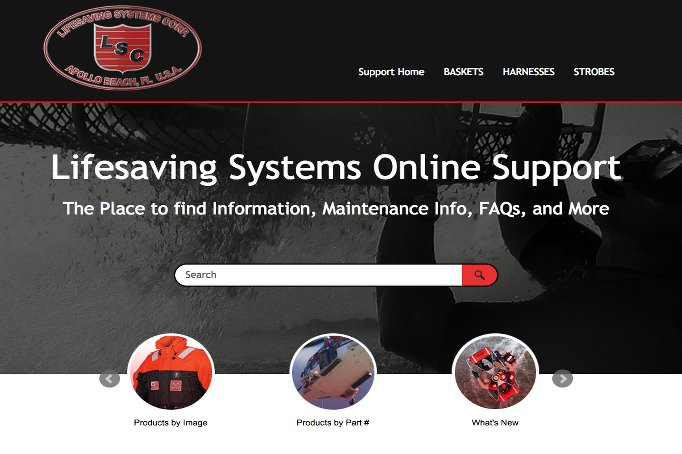 Image of the lifesaving systems support website.