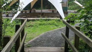 Tipi - Mindfulness - Mindful Future - Wales