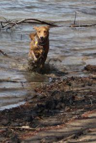 Carly running wild