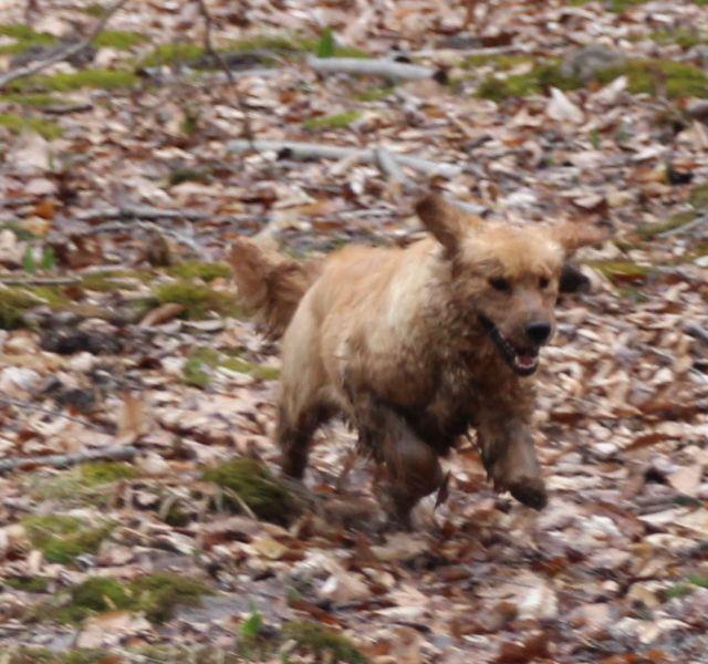 12 March 16 Lady mud child