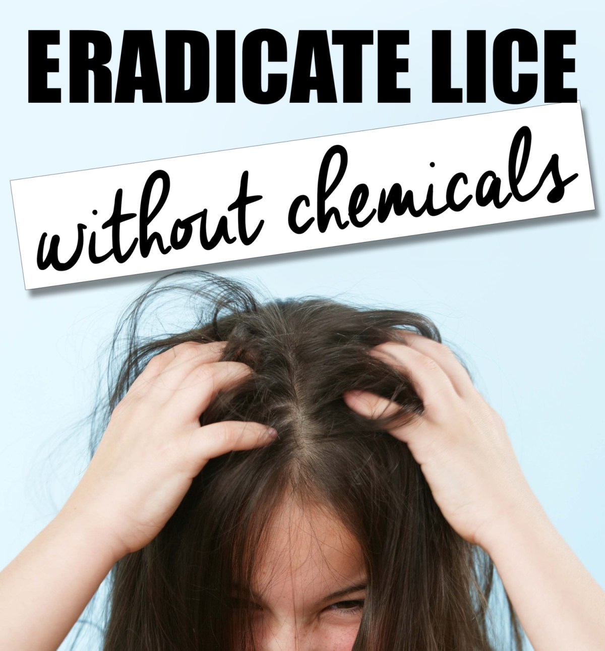 Eradicate Lice Without Chemicals