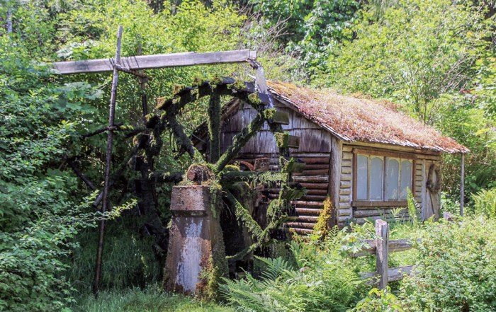 Discover the charming historic Dalby Water Wheel on the Olympic Peninsula. Explore the top 10 things to do in Olympic National Park. Photo credit: Wendy Nordvik-Carr©