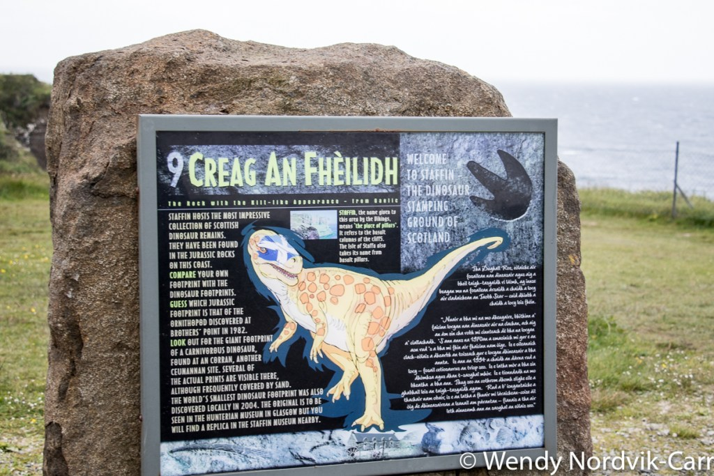 The Stafainn Dinosaur Museum offers an excellent collection of Middle Jurassic history and dinosaur fossils. It showcases discoveries found on the Isle of Skye. Photo Credit: Wendy Nordvik-Carr