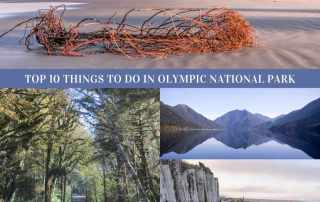 Top 10 things to do in Olympic National Park Washington State