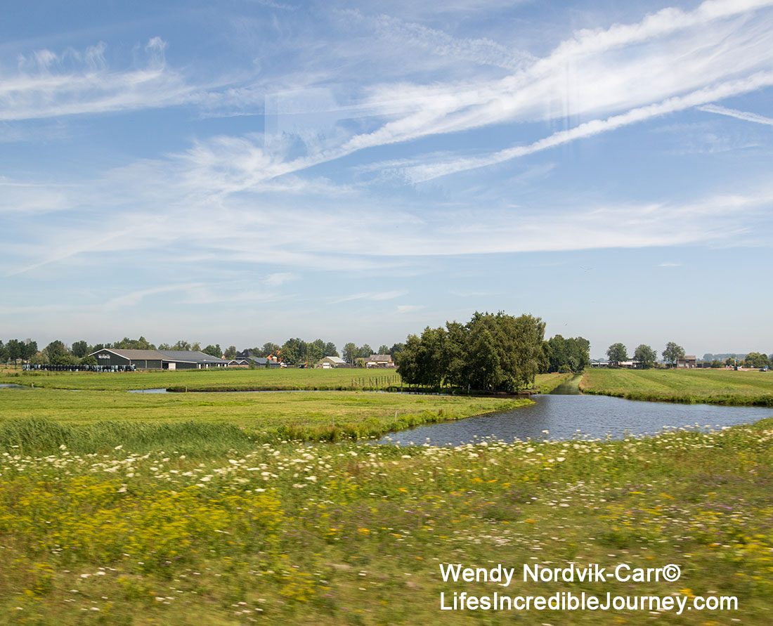 Visit the stunning Dutch countryside one of the top things to do in Edam, North Holland. Photo Credit: Wendy Nordvik-Carr