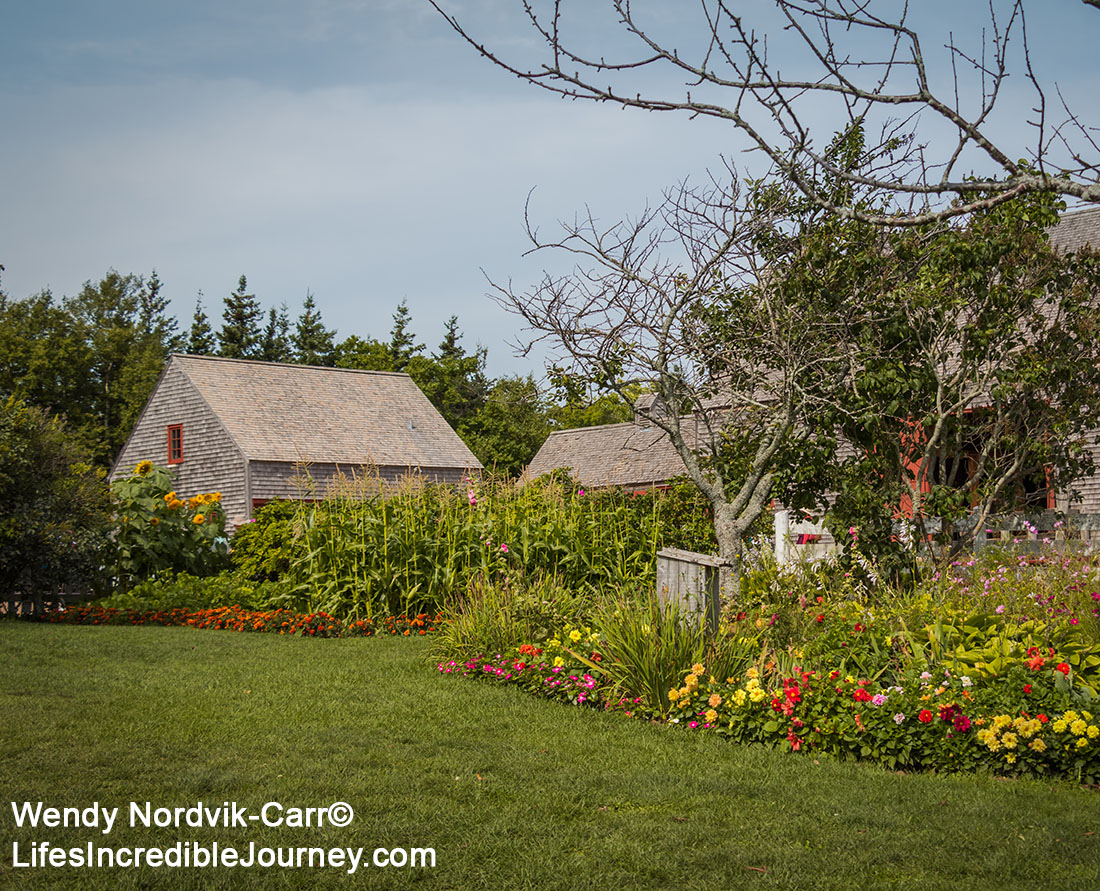 """Green Gables stunning countryside setting is located in Prince Edward Island National Park in Cavendish. Cavendish and the 19th century farm, Haunted Woods and Lover's Lane were made famous by author Lucy Maud Montgomery with her stories about """"Anne of Green Gables"""". Don't miss this popular tourist destination on the scenic drive known as Green Gable Shore. Photo Credit: Wendy Nordvik-Carr©"""