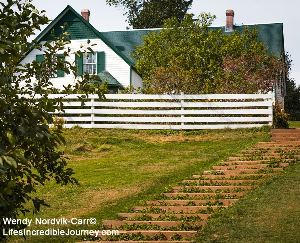 "Green Gables Heritage Place stunning countryside setting is located in Prince Edward Island National Park. Cavendish and the 19th century farm, Haunted Woods and Lover's Lane were made famous by author Lucy Maud Montgomery with her stories about ""Anne of Green Gables"". Don't miss this popular tourist destination on the scenic drive known as Green Gable Shore. Photo Credit: Wendy Nordvik-Carr©"
