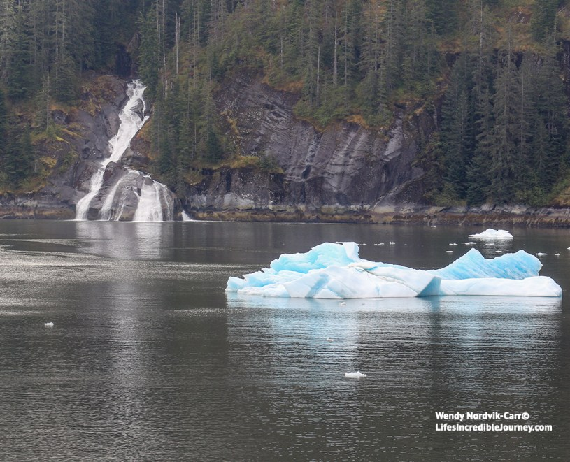 Must do things to see on an scenic cruise to Alaska to see glaciers, whale watching, Ketchikan, Skagway, Juneau, wildlife and wilderness.