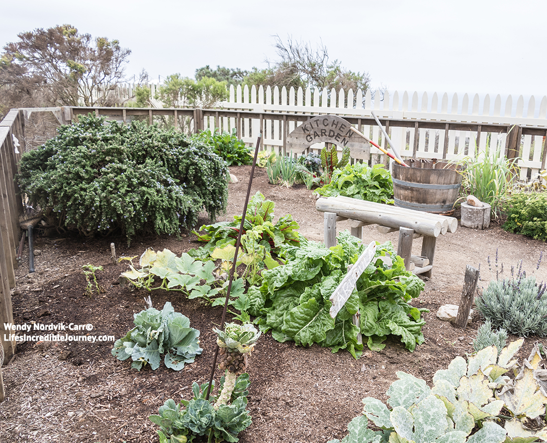 The garden of the Point Loma Lighthouse. Photo Credit: Wendy Nordvik-Carr©