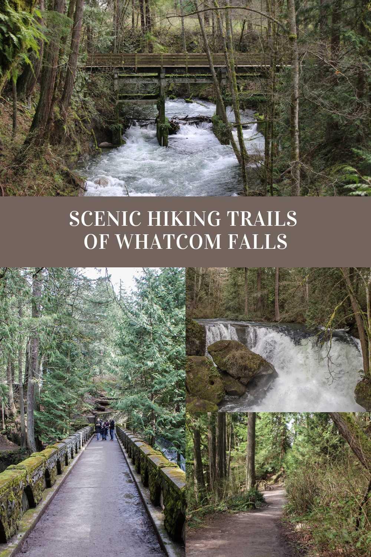 Scenic trails of Whatcom Falls Park, Bellingham, Washington