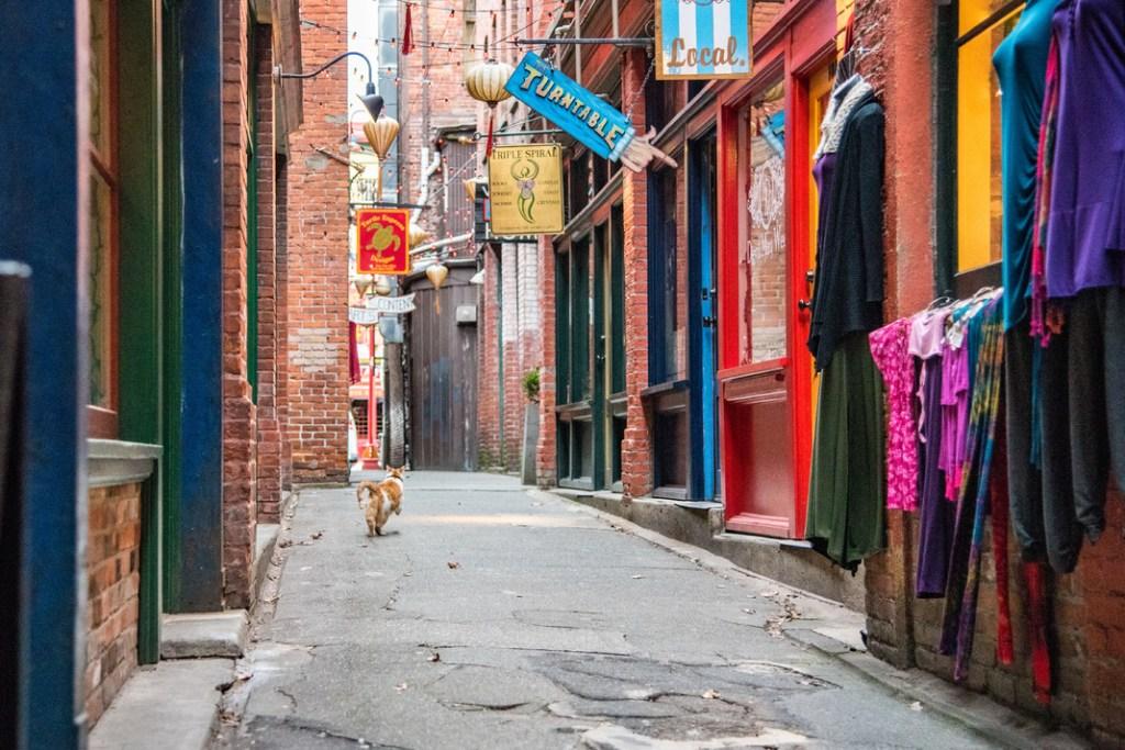 Victoria's Fan Tan Alley - Photo Credit: Brandon McGeachie©