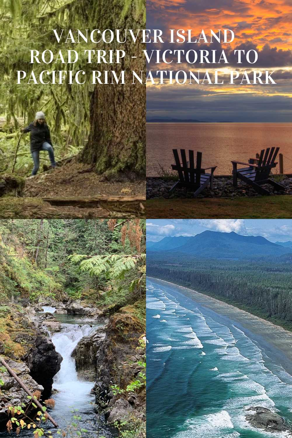 Top things to do from Victoria to Pacific Rim National Park