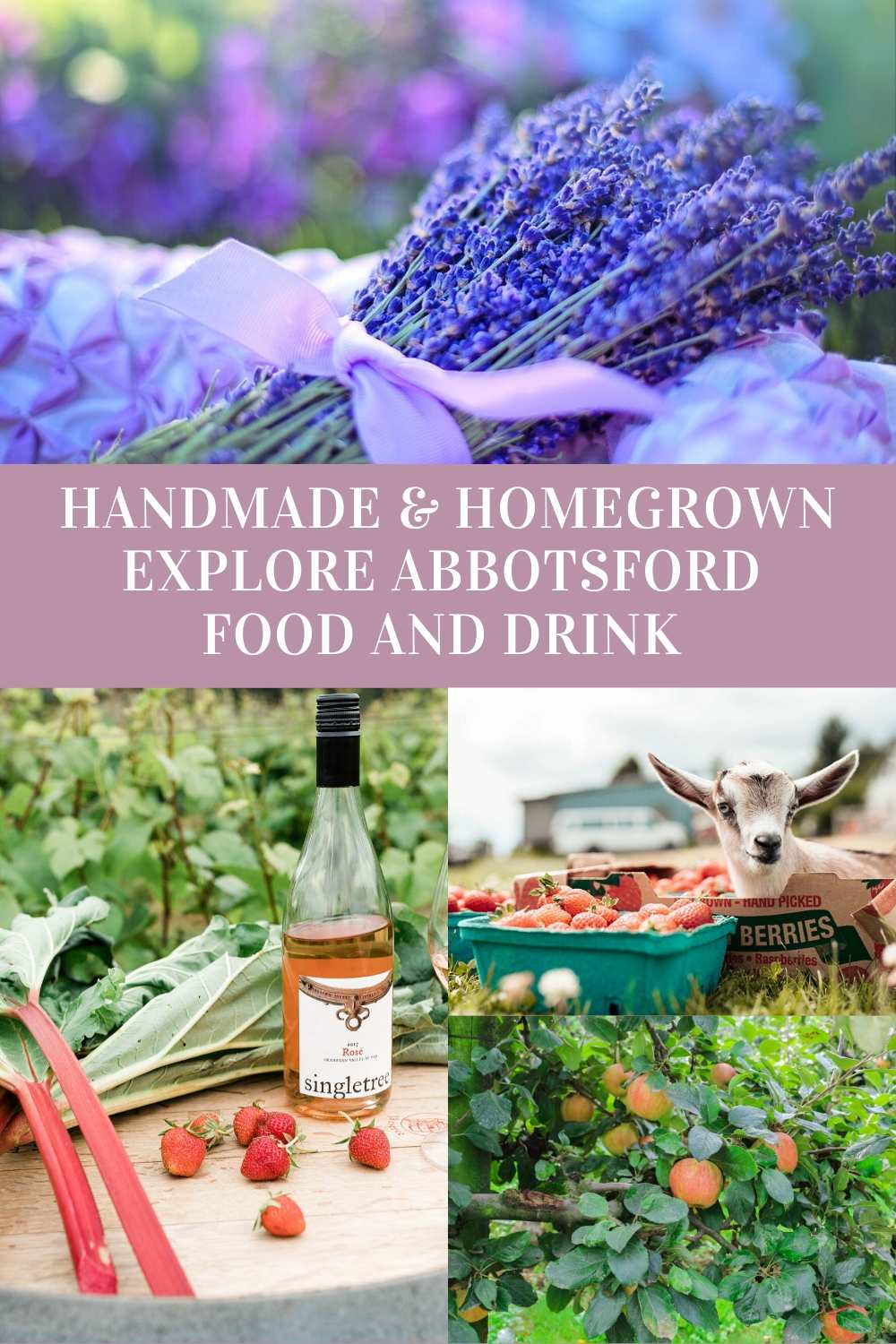 Discover handmade homegrown country harvest in Abbotsford