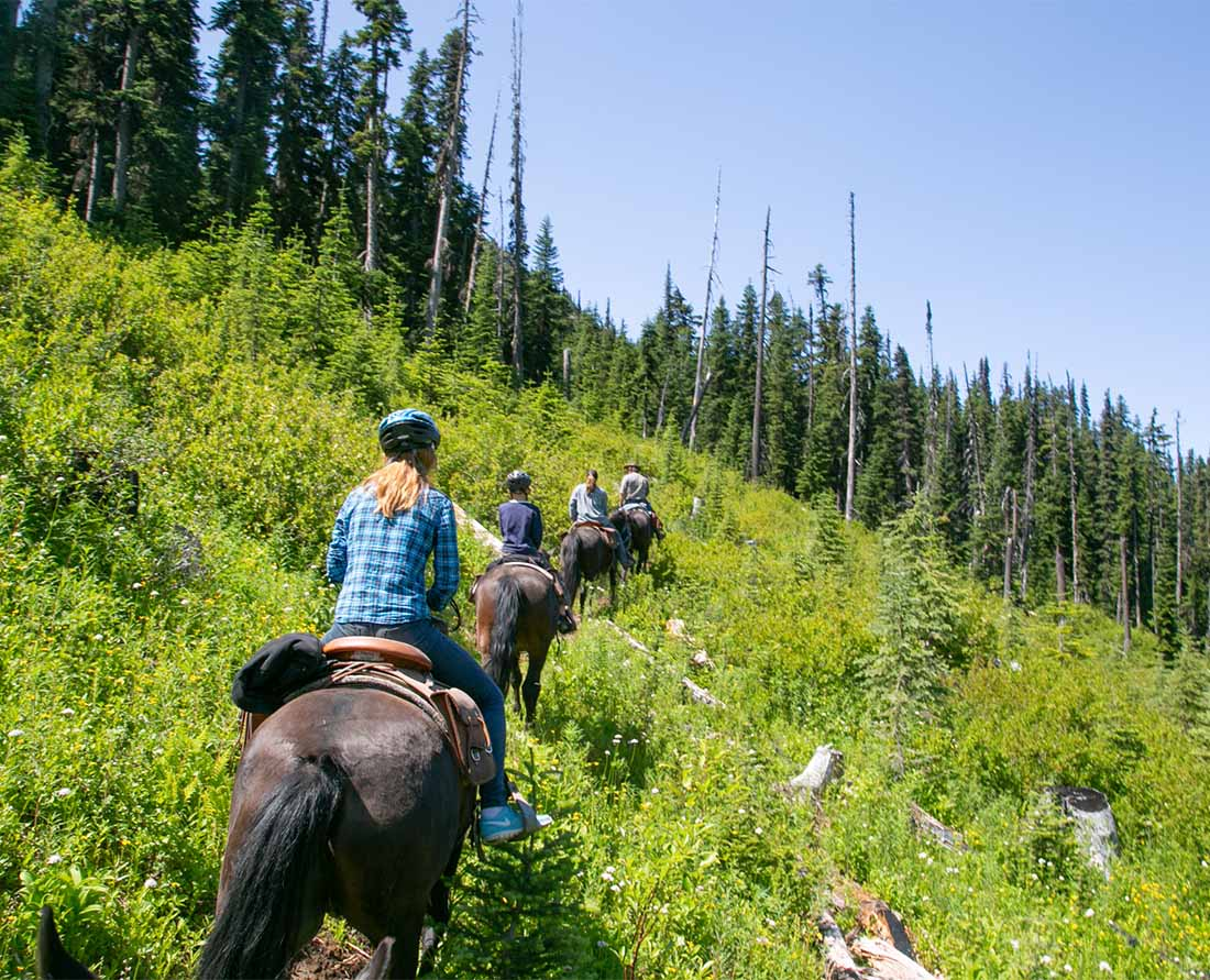 Horseback riding is one of the best things to do near Nairn Falls Provincial Park and the Whistler Pemberton area