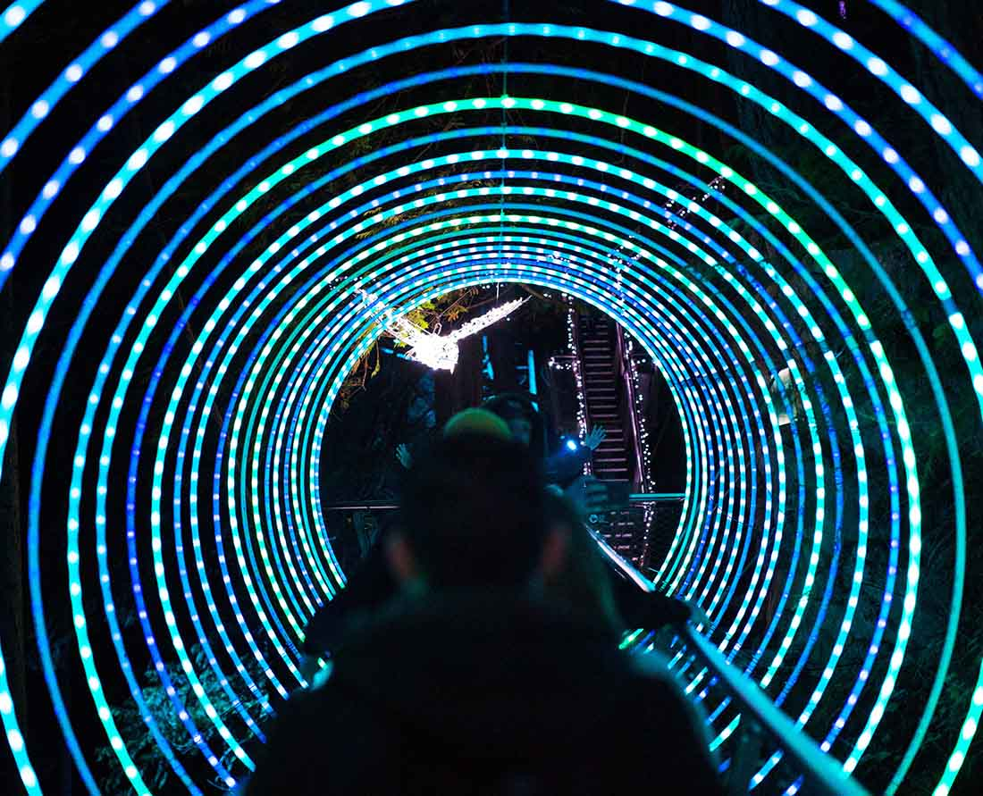 One of the many Metro Vancouver Christmas Events - Canyon Lights at Capilano Suspension Bridge in North Vancouver.