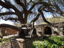 The Alamo wishing well