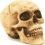 anxiety skull