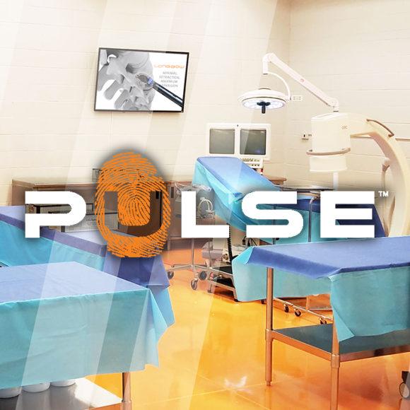 2016 PULSE WORKSHOPS