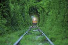 Tunnel of love Train, Ucraina (Un intreccio di alberi e vegetazione, lungo circa 3 chilometri, un tratto percorso da un treno che trasporta legname ad una fabbrica locale)