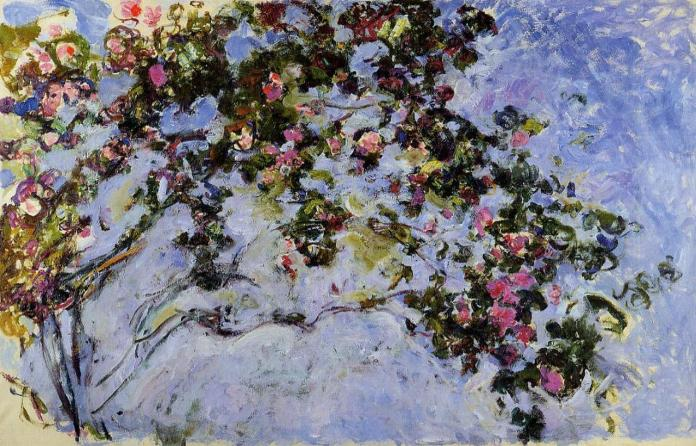 Monet Mostra Roma