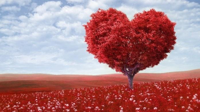 significato dell'amore
