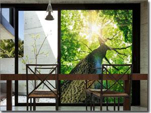 Fensterfolie Online Kaufen Dekorative Fensterfolien