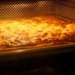 Federweißer und Zwiebelkuchen