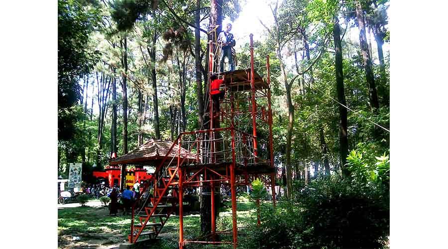 Yuk Tamasya ke Punti Kayu Palembang