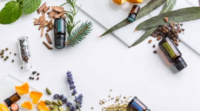 Manfaat dan Khasiat Minyak Zaitun untuk Wajah, Kesehatan dan Kecantikan