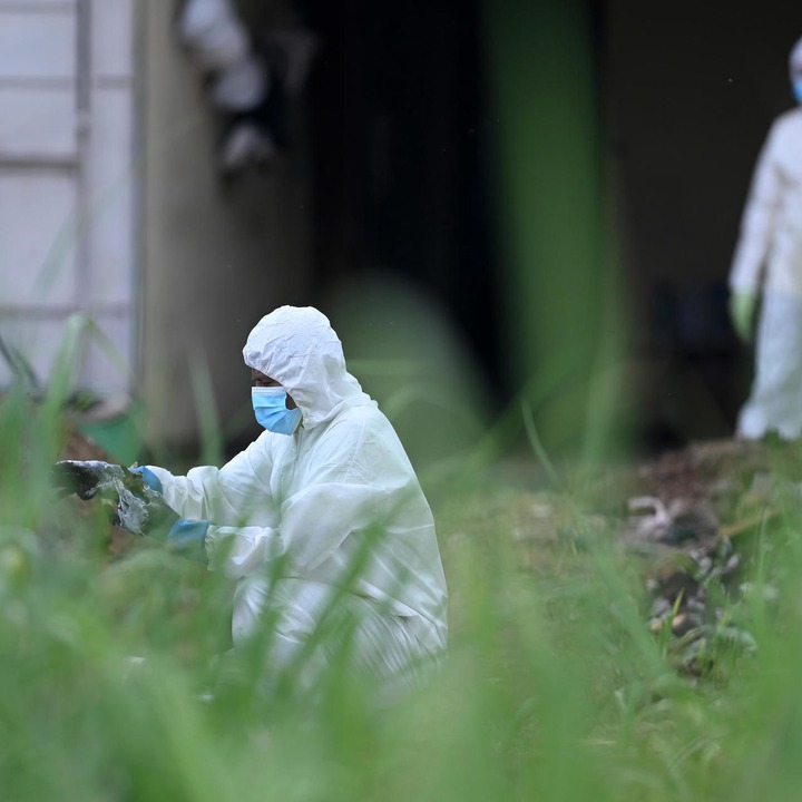 Mass grave containing 40 bodies of mostly women is discovered at house of former police officer-turned gang leader (photos)