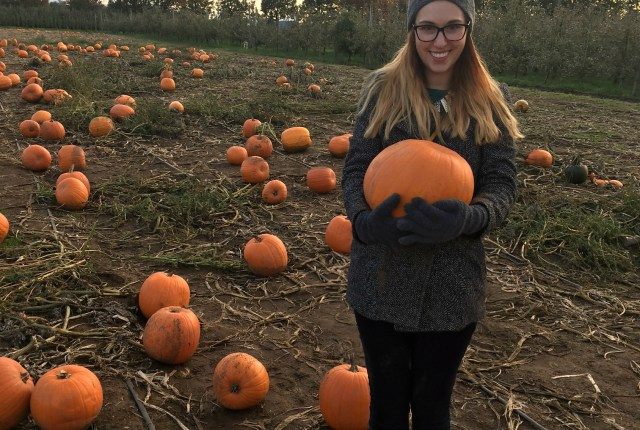 Taves family farm and pumpkin patch fraser valley local blogger