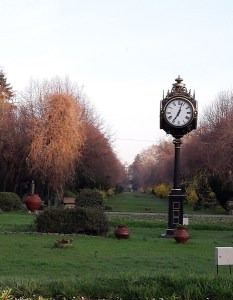 Sunday free associations # 8. About punctuality
