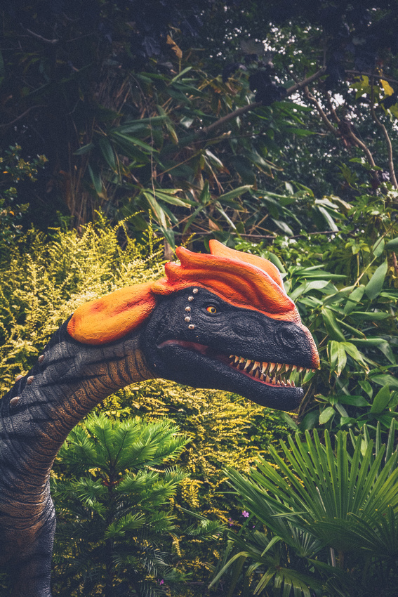 Animated dinosaurs at Bristol Zoo Gardens | Dinomania