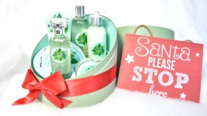 the body shop kerst 2015 fuji green tea