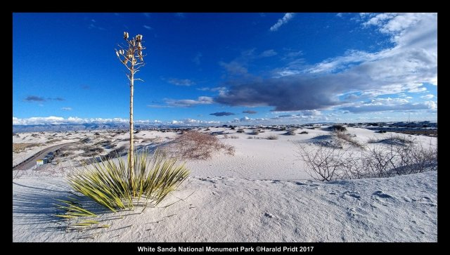 White Sands National Monument Park