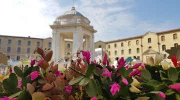 Ancona Flower Show – 30/31 marzo 2019, Mole Vanvitelliana